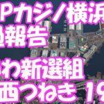 れいわ新選組 大西つねき 横浜カジノ誘致問題経過報告を拝見して雑感
