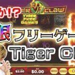 【オンラインカジノ】追加の嵐!?終わらないフリーゲームが大金をもたらす!【タイガークロウ】<vol.218>