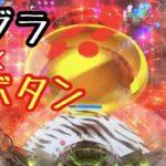 新台実践《ぱちんこ AKB48 ワン・ツー・スリー!! フェスティバル》ウワサの神スペック!!ゴールデンローズモードで沖パチにするのでめちゃ楽しいぞ!ゼブラや金プッシュボタンとか