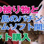 【ネット購入】猫の被り物と、鬼ヶ島のパチンコ店のゲーム開封