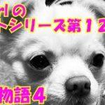 【大海物語4】実践パチンコバイト 第123回