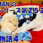 【大海物語4】実践パチンコ夜勤 第252夜