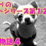 【大海物語4】実践パチンコバイト 第127回