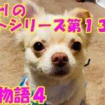 【大海物語4】実践パチンコバイト 第136回