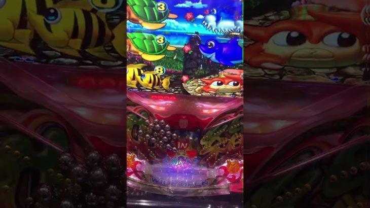 パチンコ衝撃映像!!パチンカスが釘をいじり過ぎたパチ屋で海物語を打った結果…