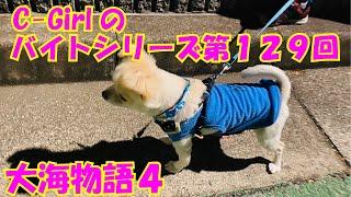 【大海物語4】実践パチンコバイト 第129回
