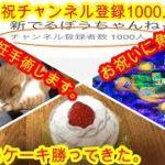 2月3日 パチンコ実践 大海物語4 祝チャンネル登録1000人突破 祝ケーキ買って来た。猫避妊手術します。