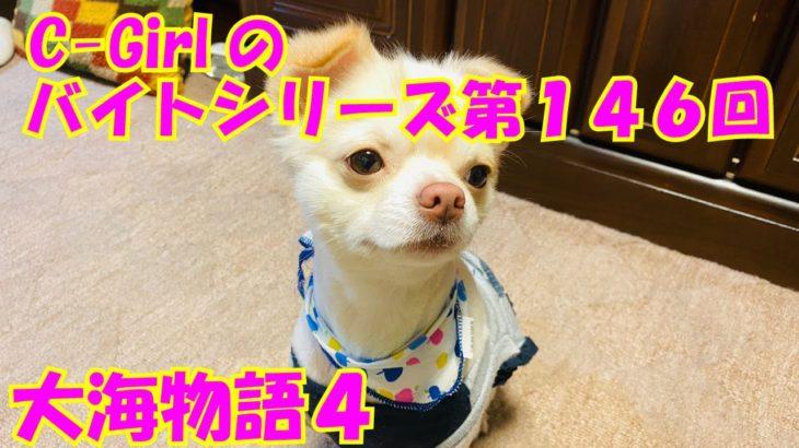 【大海物語4】実践パチンコバイト 第146回
