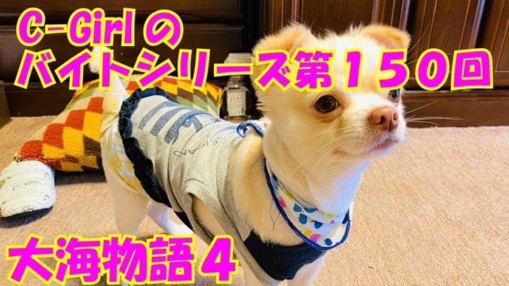 【大海物語4】実践パチンコバイト 第150回