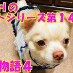 【大海物語4】実践パチンコバイト 第142回