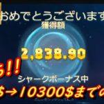 【神回】300$→10300$までの軌跡 その1