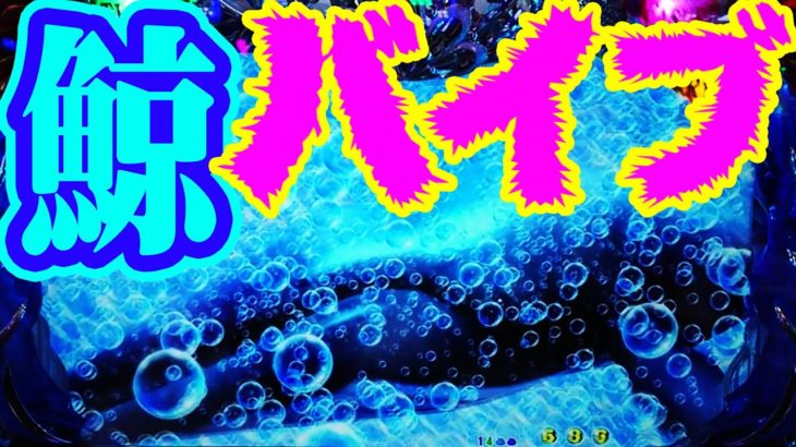 『CR大海物語4 ㉟』超ド級プレミア★鯨バイブ!