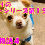 【大海物語4】実践パチンコバイト 第157回