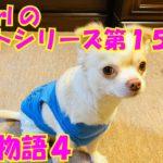 【大海物語4】実践パチンコバイト 第155回
