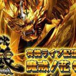 #05 CR牙狼魔戒ノ花 『実機LIVE配信』【たぬパチ!】