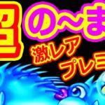 『CR大海物語4 アグネス51』遂に出現★超ノーマル!