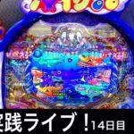 パチンコ屋さんでガチ実践ライブ【大海物語4】2020/9/30