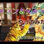 【カジノ】ドラゴン&タイガーやってみた!