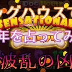 #156【オンラインカジノ ルーレット】ドッグハウスにお賽銭(BET)で今年を占ってみた! 大凶?!