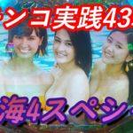 【パチンコ実践】P大海物語4スペシャル【43戦目】