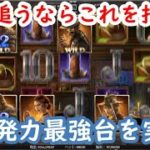 【オンラインカジノ】夢を追うならこのスロット!爆発力トップレベルスロットを実践!【DEAD OR ALIVE2】