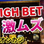 【オンラインカジノ】スロット Golden Ticket2 5ドルベット後半!回しても回しても増えません、、、【BONSカジノ】