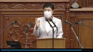 辻本議員対岸田総理 IRカジノ 2021年10月11日